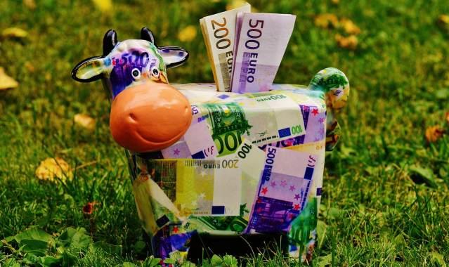 earn cash back