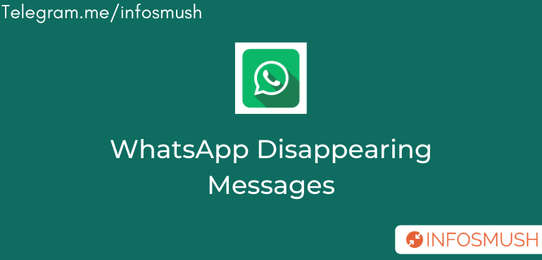 How WhatsApp Disappearing Messages Feature Will Work