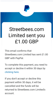 streetbees payment proof